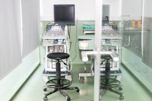 ecografia veterinária