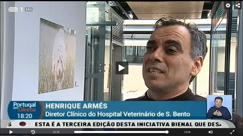 Dr Henrique Armés